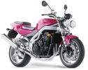 Thumbnail 2002-2006 Triumph Daytona 955i, Speed Triple Workshop Repair Service Manual BEST DOWNLOAD